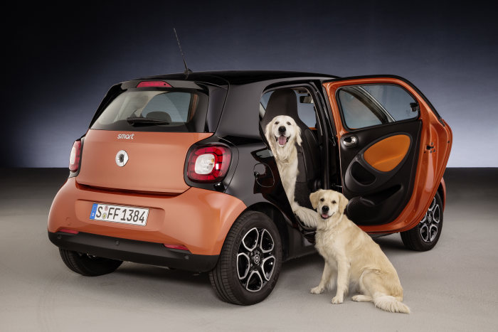 Ideal for dogs: smart forfour with readyspace seats: smart for dogs